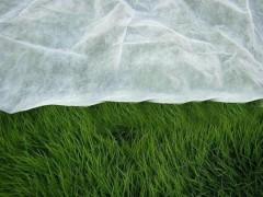 冬季果农们为什么要使用农用无纺布?