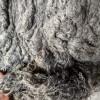 供应针刺毛毡原料